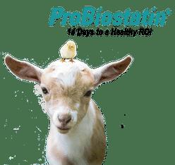 ProBiostatin Livestock Probiotic for goats