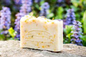 calendula goat milk soap
