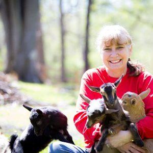 Regina nigerian dwarf goat owners
